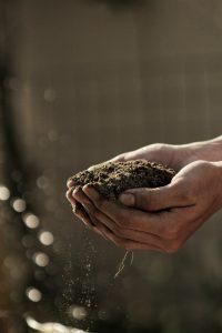 Rozwiązania dla rolników indywidualnych, grup producentów i nie tylko